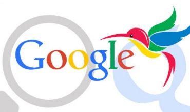 الگوریتم مرغ مگس خوار گوگل و تاثیر بر وب سایتها
